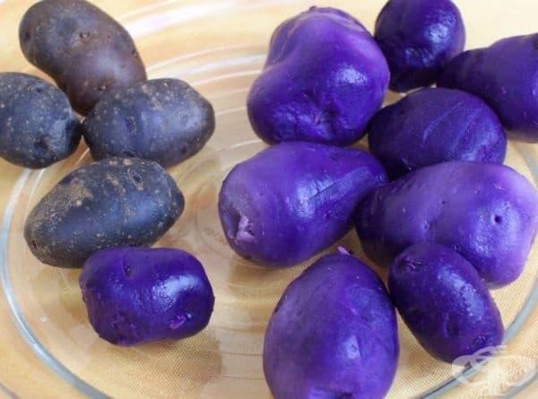 Виолетови картофи. В Перу са известни 4000 вида картофи.