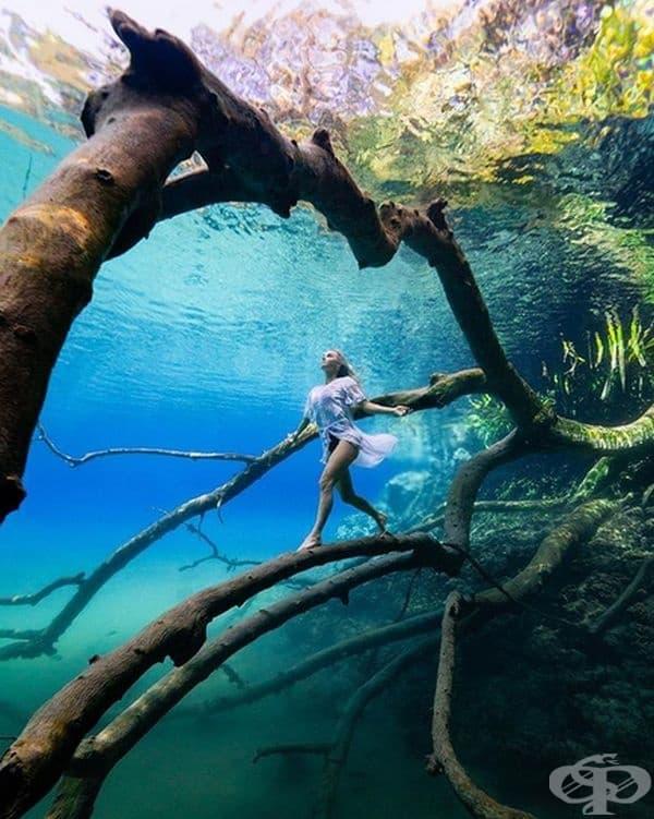 Mirror Lake в Индонезия е меромиктично. Това означава, че водните слоеве в него не се смесват. Горният слой е кристално чист и хладен, а долният слой е топъл, зелен и солен.