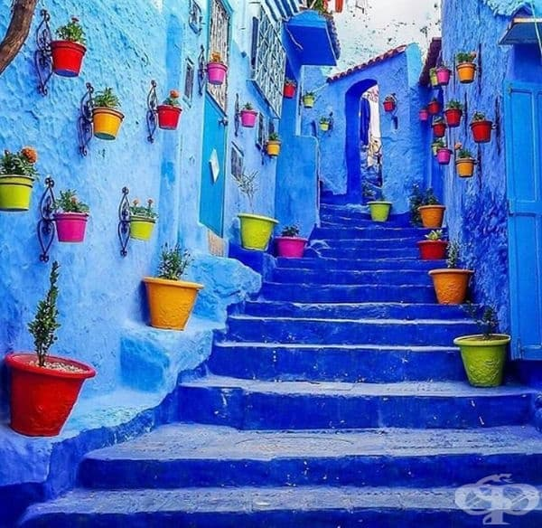Шефшауен, синият град на Мароко.
