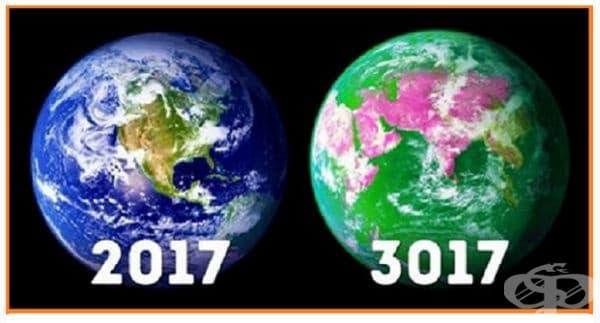 40% забуга. Според статистиката хората са убили повече от 40% от дивата природа, включително животни и растения. Представете си какво ще се случи например след 100 години?