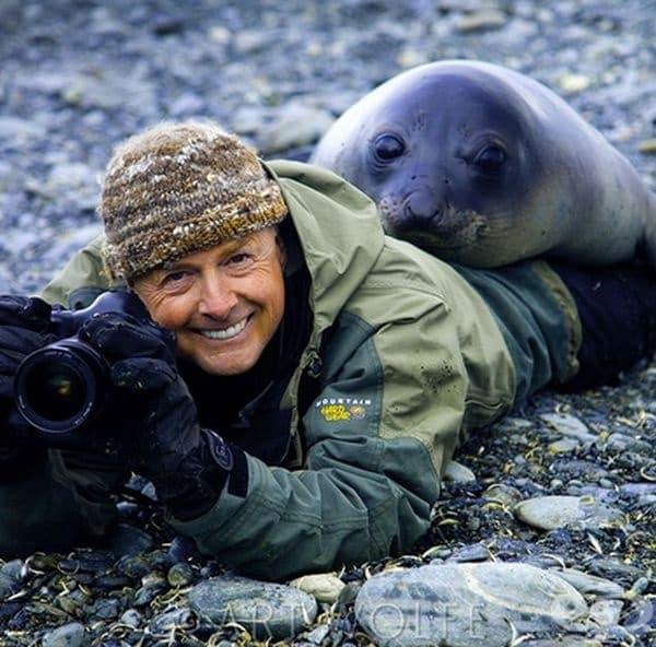 Тюлен се закача с  известния фотограф Арт Улф, докато снима по работа в Южна Джорджия.