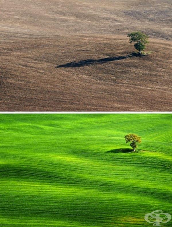 Място в Тоскана с няколко месеца разлика.