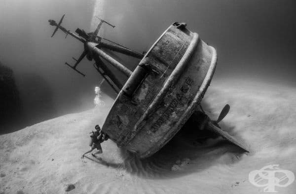 """""""Водолаз се опитва да предотврати корабокрушение"""", финалист в номинацията """"Потънал кораб""""."""