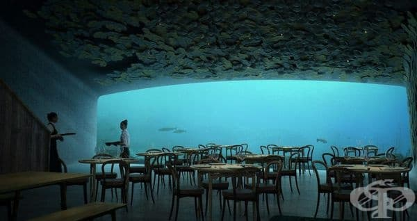 """Ресторант """"Under"""", Линденес, Норвегия. Той все още не е официално открит, очаква се това да се случи през пролетта на 2019 г. Капацитетът му е за 100 човека. Гостите ще могат да се насладят между 15 и 18 ястия."""