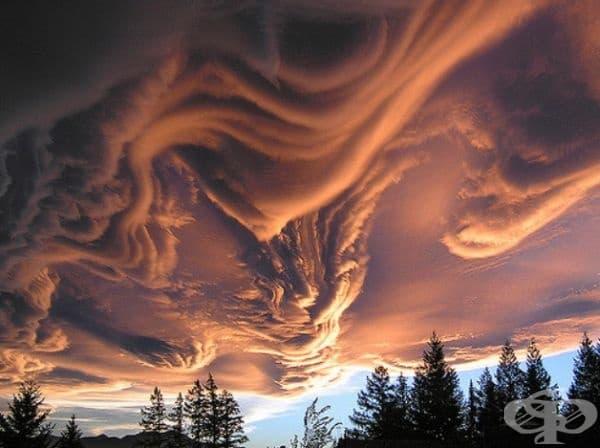 Облаци асператус. Те са рядък природен феномен. Появяват се предимно в северната част на САЩ в щата Джорджия.