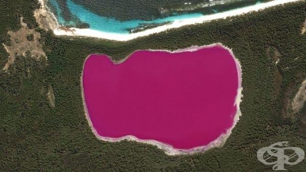За разлика от езерото Хилиър, което е розово през цялата година, розовият цвят на езерата в Националния парк Мъри-Сънсет във Виктория се вижда най-добре в края на лятото. Тогава се променя водата, варирайки от тъмно розово до бледа сьомга.