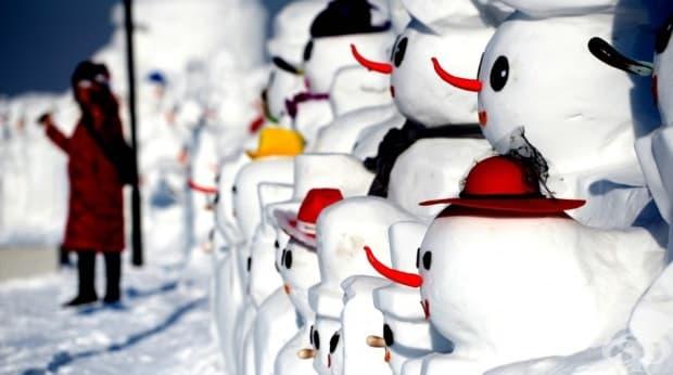 10 000 души стоят зад изработката на снежните творения.
