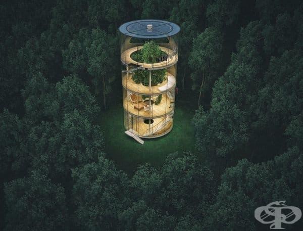 """""""Дърво в къща"""" е уникален проект, който ви позволява да се доближите максимално до природата."""
