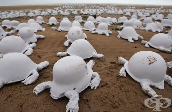 Френският художник Рахид Химуне създаде инсталация от 1000 хвърляния на руски, немски и американски бойни каски от Втората световна война. Инсталацията представлява костенурки и осъжда глобалното насилие.