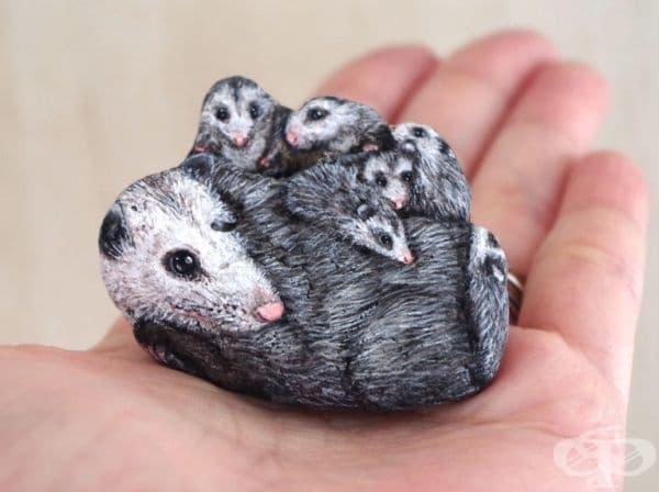 Семейство опосуми.