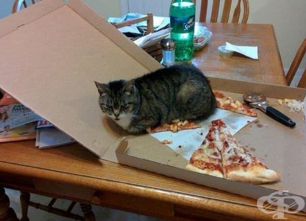"""Ето това е моята пица сега!"""""""