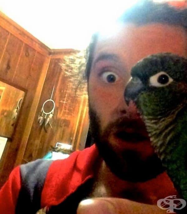 Най-добрата снимка на папагал и човек в един кадър.
