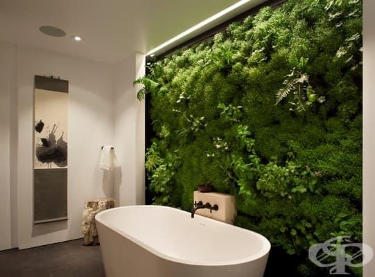 """""""Пренесете""""природата във вашата баня с вертикална градина."""
