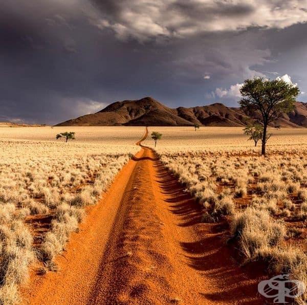 Път в пустинята Намиб.