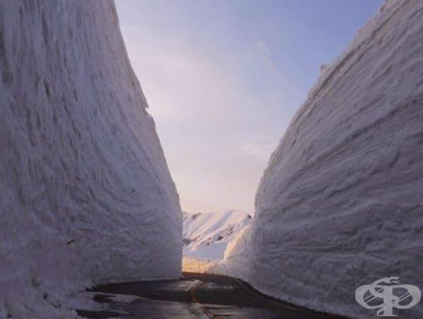 Средната температура е само 2 градуса по Целзий. Това е едно от местата в света, където пада най-много сняг със средно ниво от 7 метра.