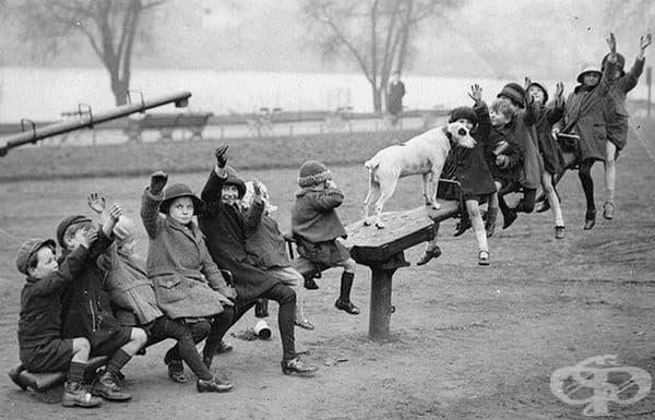 Деца се забавляват на люлка тип везна.