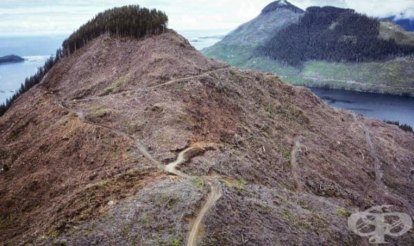 Върхове без растителност в Канада.