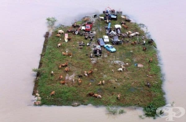 Това не е диорама. Това е истински остров в Малайзия, където живеят хора.