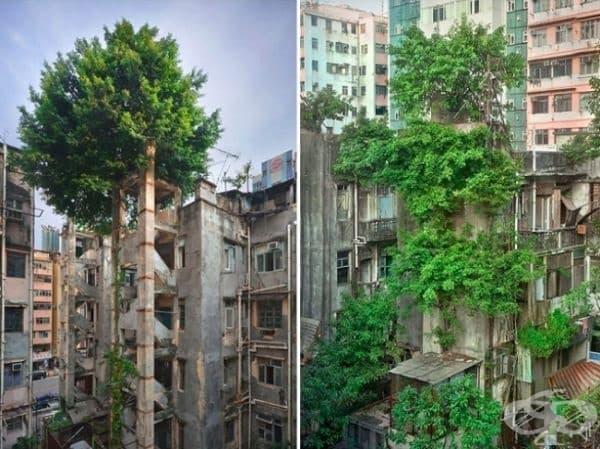 Една малко по-различна сграда, Хонг Конг, Китай.