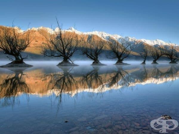 Езеро Уакатипу, Нова Зеландия. (Снимка: Брад Гроув)