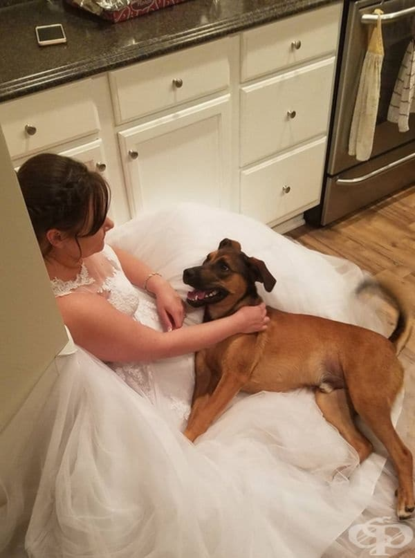 """""""Жена ми и кучето ми след церемонията."""""""