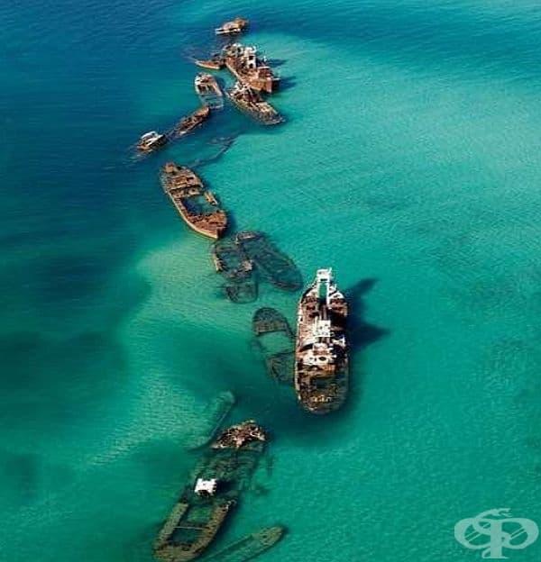 Това е развалината на Тангалуама в Куинсланд, Австралия. Тези лодки са оставени да потънат през 60-те години, за да започне формирането на естествени коралови рифове.