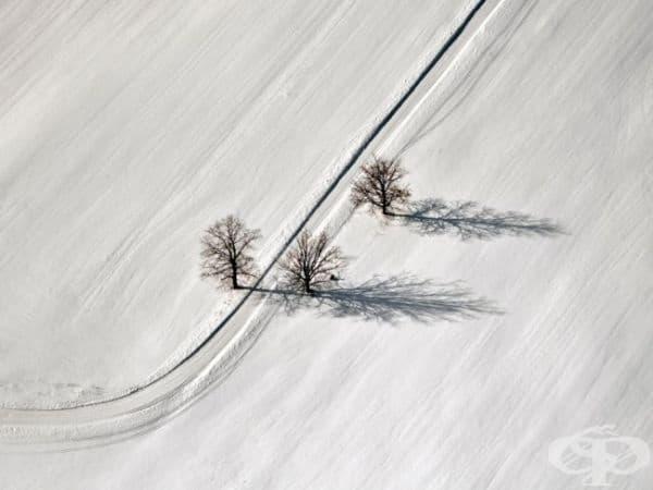 Пейзаж, Латвия. (Снимка: Михаилс Игнац)