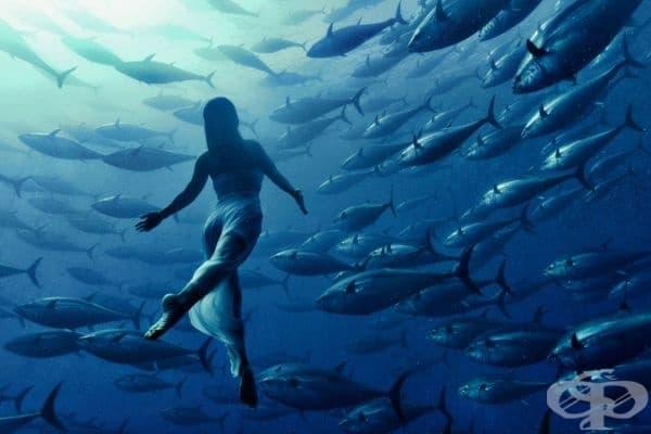 Японската плувкиня по синхронно плуване Сахо Харада.
