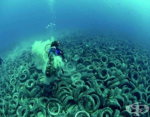 """""""Голям тихоокеански боклук"""" (Great Pacific Garbage Patch)."""