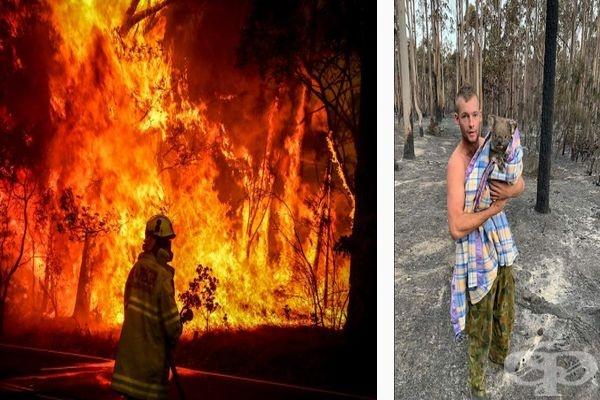 20 снимки показват, че има надежда в борбата срещу огромните пожари в Австралия  - изображение