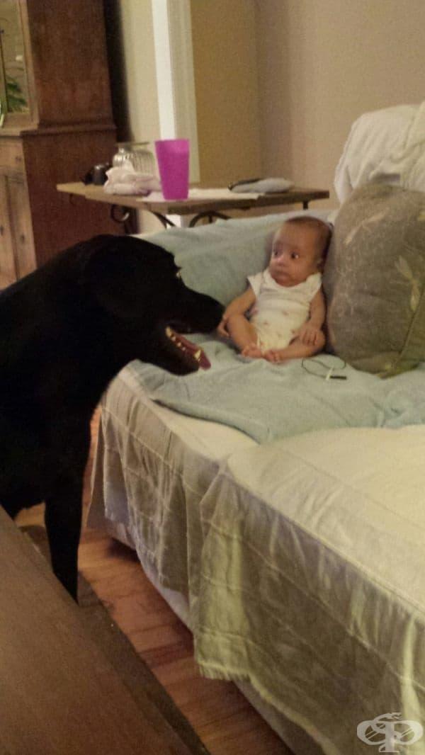 """""""Моята сестра вижда куче за пръв път."""""""