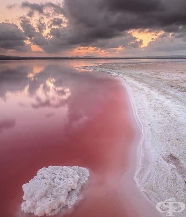 Розовото езеро Хилиър, Австралия.