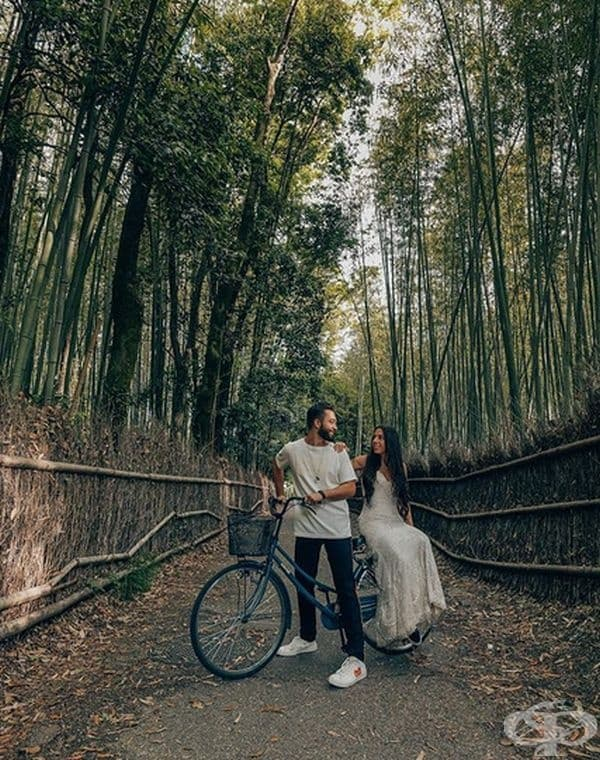 Бамбуковата гора Арашияма, Япония