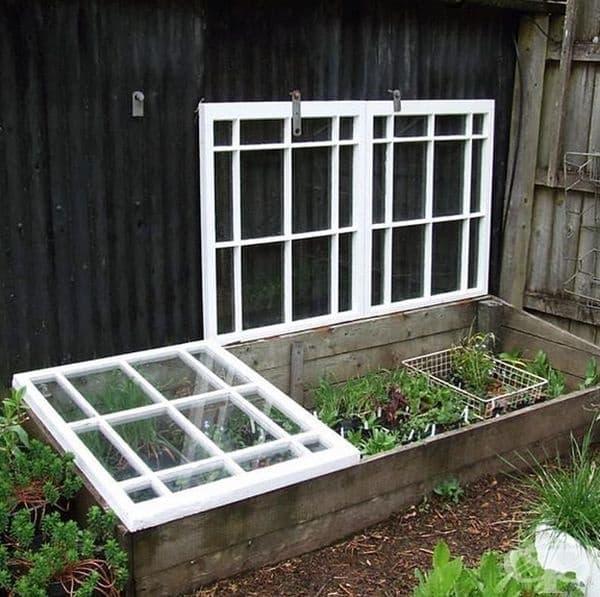 Ако подменяте прозорците на дома си, можете да използвате старите за изграждане на оранжерия в градината си.