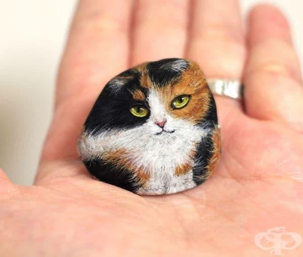 Котка.