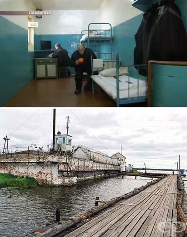 Затворът Алкатраз на остров Петак, Русия. Там се държат най-опасните руски престъпници. Всички са заключени по 22,5 ч. на ден в двуместни стаи. Само някои затворници имат право на 2 посещения от близки в годината.