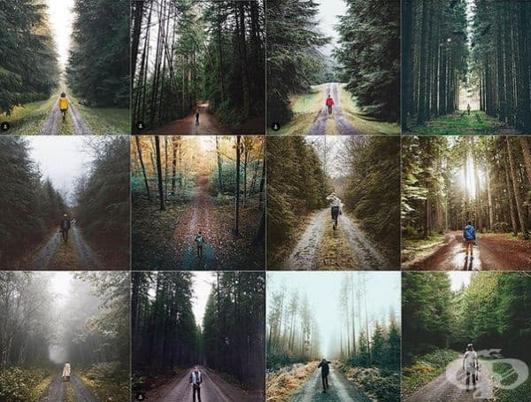 В гората.