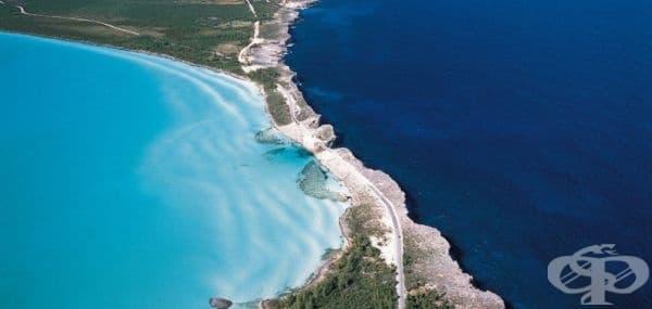 Карибско море и Атлантически океан.