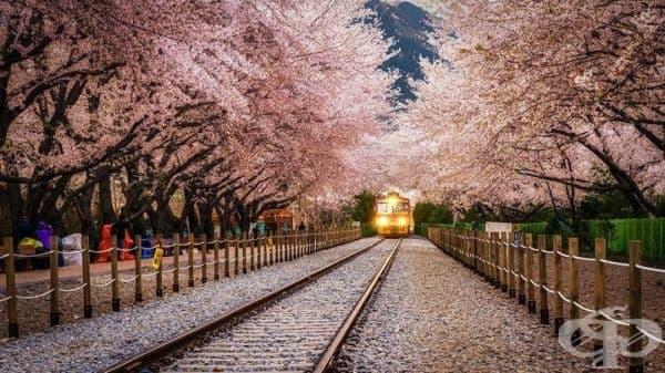 Гара Gyeonghwa, Южна Корея.