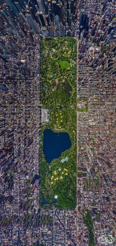 Сентръл парк в Ню Йорк, САЩ.