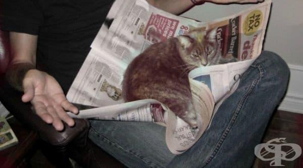 """""""Как може да гледаш вестника, когато имаш мен?"""""""