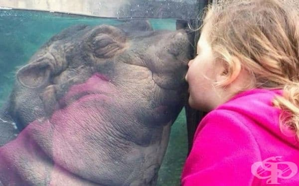 Целувка.