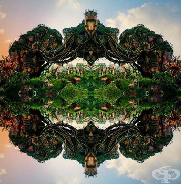 Плаващ остров в Дисни. Изображението изглежда на калейдоскоп.