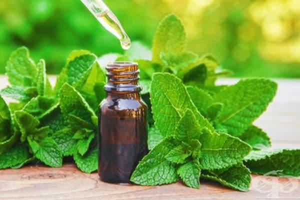 Мента. Според проучване от 2014 г. миризмата на мента облекчава гаденето. Можете да вземете както ментови листа, така и етерично масло със себе си по време на път. Ментовите бонбони също са добра алтернатива.