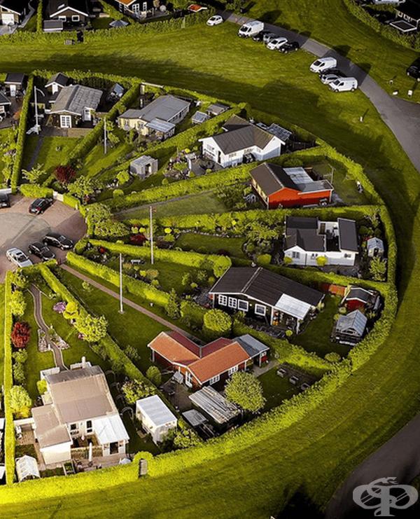 Къщите в Brondby Haveby са разположени в кръгова форма с много зеленина около тях.