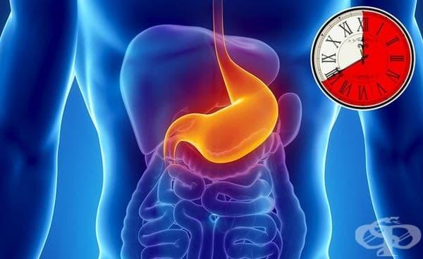 Храната, която се храносмила по-бавно, повишава нивата на кръвна захар по-бавно и дава балансирана и стабилна енергия. Но редовният й прием ще натовари максимално храносмилателната система и човек ще се чувства тежко.
