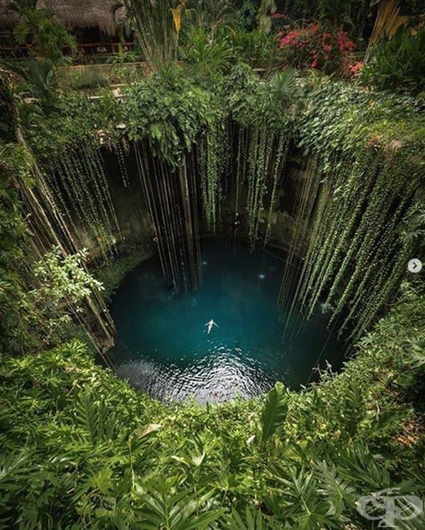 Cenote Ik-Kil в Мексико изглежда великолепно. Маите го смятали за свещено място, а археолозите и спелеолозите са открили кости и бижута в дълбоките му води.