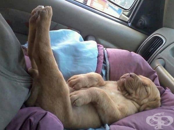 Той буквално спи с краката нагоре.