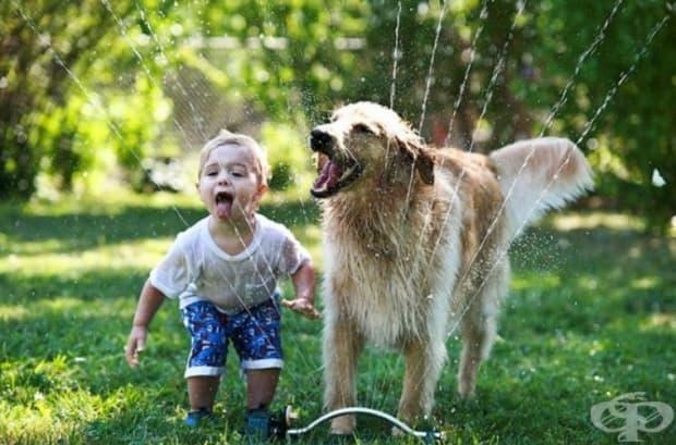 Истинското щастие е тогава, когато е споделено!