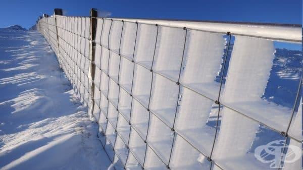 Замръзнала ограда, превърната в перфектна ледена скулптура.